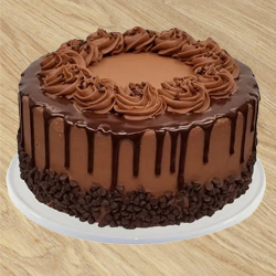 Luscious Chocolate Cake from Taj or 5 Star Hotel bakery to Nagari
