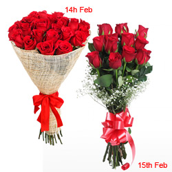 2 Day Surprise Serenade Continue Surprising your Valentine on 15th too !