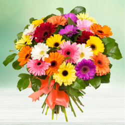 Bouquet of beautiful assorted brightly hued Gerberas to Nagari