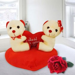 Attractive Couple Teddy with Sweet Love