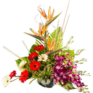 Treasured Mixed Flowers Arrangement with Warm Wishes