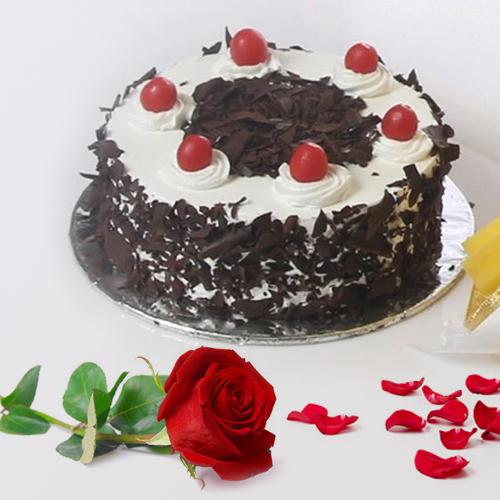 Online Deliver Black Forest Cake N Red Rose