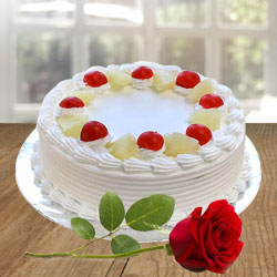 Send Yummy Vanilla Cake and charming Red Rose to Bolpur