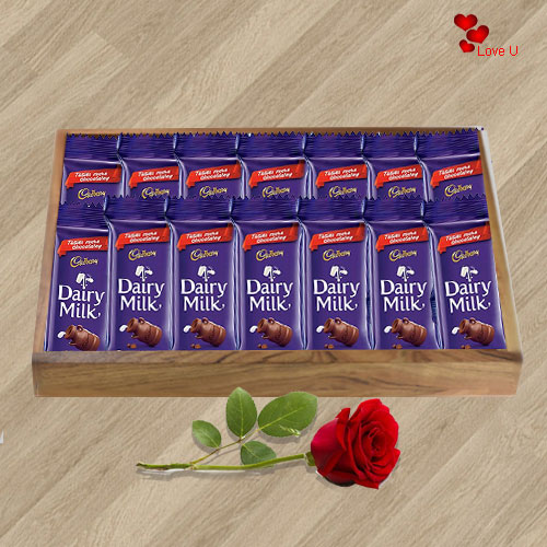 Deliver Online Combo of Dairy Milk Chocolates N Red Rose