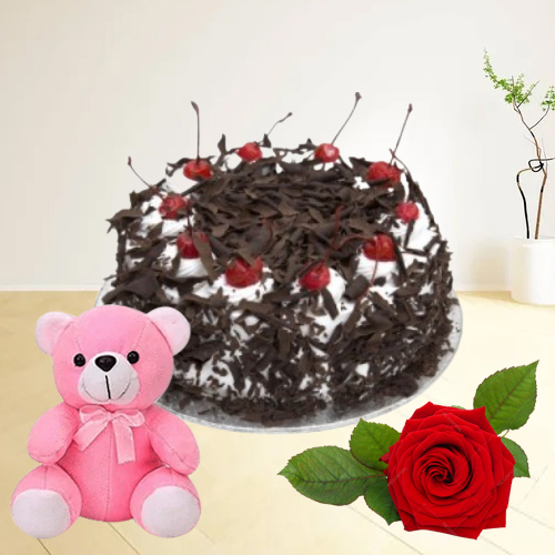 Order Black Forest Cake with Red Rose N Teddy Online