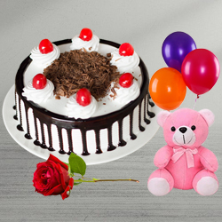B Day Grace Single Rose with Black Forest Cake, Teddy and Balloons