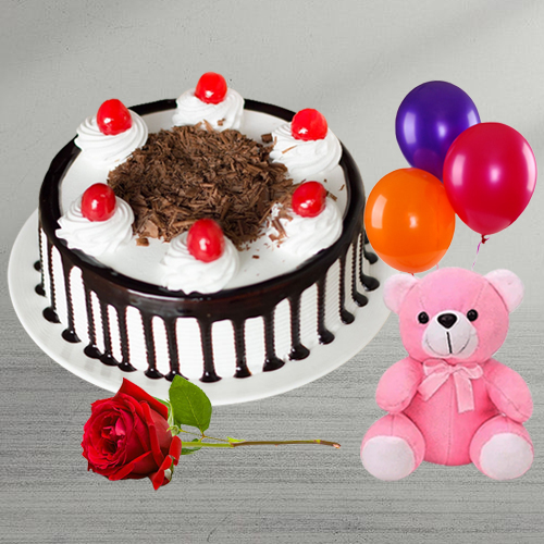 Deliver Black Forest Cake with Red Rose, Teddy N Balloons