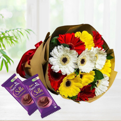 Multi-Colored Gerberas Arrangement N Cadbury Dairy Milk Silk Combo Gift