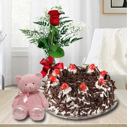 Exquisite Black Forest Cake with Single Red Rose and a Small Teddy Bear