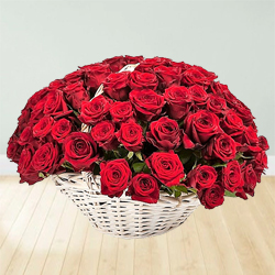 150 Red Dutch Roses Arrangement