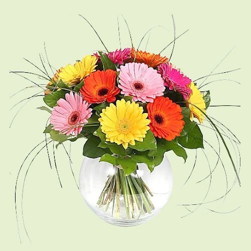 Attractive Mixed Gerberas in Glass Vase