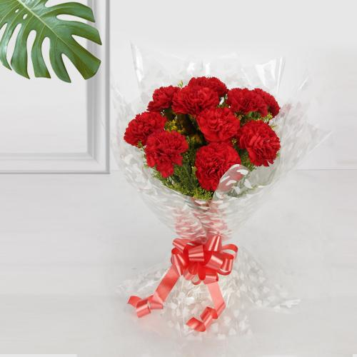 Enchanting Red Carnation Gift Bouquet