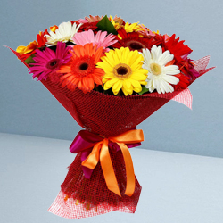 Sunny Display of�Mixed Gerberas