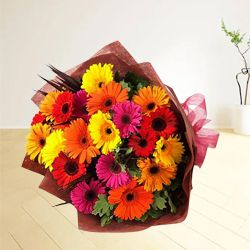 Colour-Coordinated Arrangement of Mixed Gerberas
