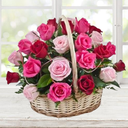 Charming Just for You 15 Pink N Red Rose