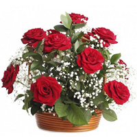 Special Birth-Day Red Roses Arrangement