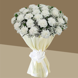 Shop for this elegant Hand Bouquet of Online White Cranations in a tissue wrap