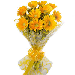 Pretty Yellow Gerberas Bouquet