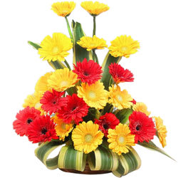 Attractive Arrangement of Red N Yellow Gerberas
