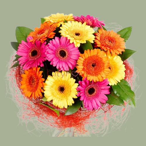 Aromatic Assorted Gerberas Bouquet
