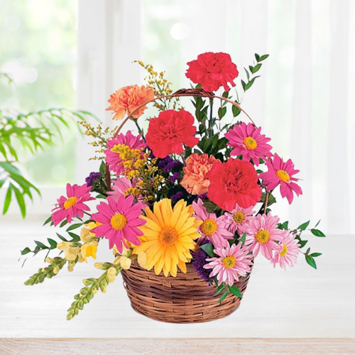 Multicolored Carnations N Gerberas Basket Arrangement