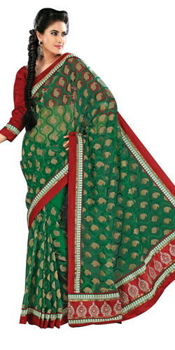 Amazing Green Net Saree