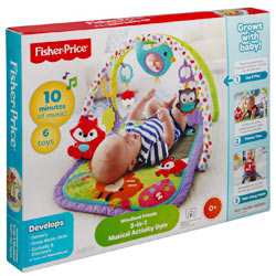 Zestful Frolic Plaything from Fisher Price